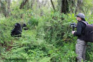 foto Jordi Galbany Rwanda